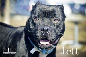 Jett1