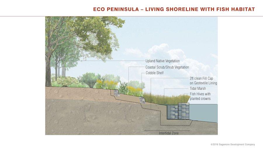 Eco Peninsula Shoreline Habitat